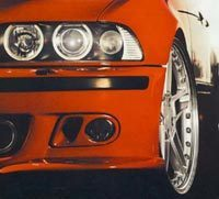 E39 M5 & Sport Fog Light Covers / Air Intake